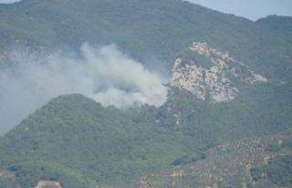 Kazdağları'nda Orman Yangını!
