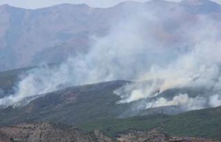 Tunceli'de Orman Yangını Devam Ediyor!