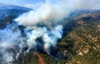 Yangın Kabusu Geri Döndü! Köyceğiz'de Orman...
