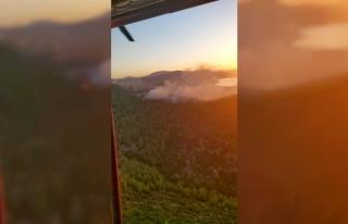 Bodrum'da Gece Çıkan Orman Yangını, Sabah...