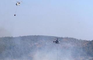 Bodrum'daki Orman Yangını 5 Saatte Kontrol...