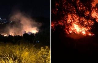 Bodrum'daki Yangın Söndürüldü!