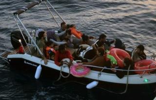 Datça'da Düzensiz Göçmen Yakalandı