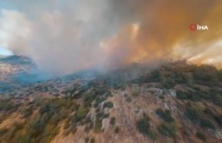 Yarış Drone'u ile Bodrum'daki Orman Yangınları...