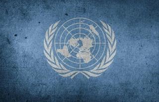 Birleşmiş Milletler'den 'Türkiye'...