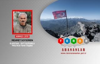 KIRMIZI LİSTEDEKİ PKK'LI ETKİSİZ HALE GETİRİLİDİ