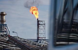 'Rusya'nın gazdaki payı yüzde 50'nin...