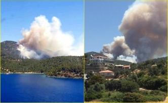 Milas'ta Çıkan Orman Yangınına Yoğun Müdahale Devam Ediyor