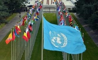 Birleşmiş Milletler: Temiz Çevre İnsan Hakkıdır