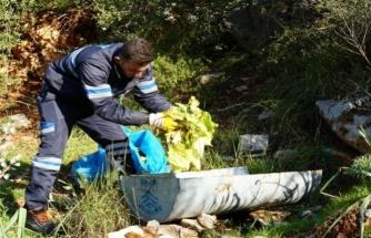 Bodrum'da Yaban Domuzları için Yemlikler Yerleştiriliyor