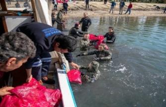 Deniz Dibi Temizliği Gümbet'te Devam Etti