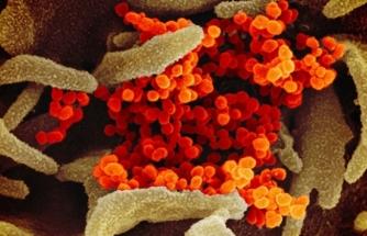 Korkutan Gelişme! Koronavirüs İran'a Sıçradı!