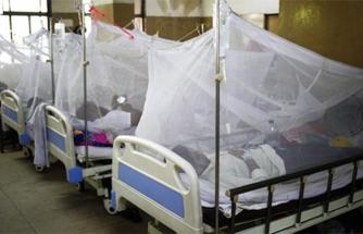 Asya'da Yeni Salgın Patlak Verdi: 254 Ölü!