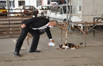 Başkan Karakuş Sokak Hayvanlarını Elleriyle Besledi