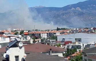 Milas'ta Buğday Arpa Fiğ ve Yulaf Ekili Araziler Kül Oldu