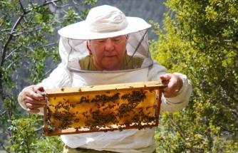 Eşinin Vasiyeti İle Arılar Geçim Kaynağı Oldu