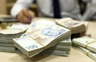 Kamu Bankaları, Düşük Faizli Krediyi Kampanyasının Suistimal Edilmesini Önleyecek!