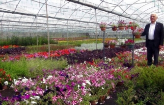 Muğla Yerel Tohumdan Sonra Çiçek Üretim Merkezi Oluyor