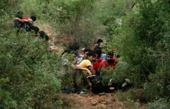 Fethiye'de 54 Düzensiz Göçmen Yakalandı