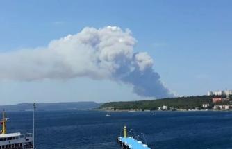 Gelibolu'daki Orman Yangınında 450 Hektar Alan Yandı