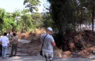 Marmaris'te Çıkan Orman Yangını Söndürüldü