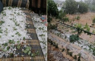 Menteşe'de Dolu Yağdı Tarım Arazileri Zarar Gördü!