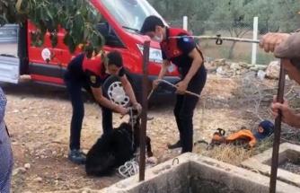 Alev Savaşçılarının Can Kurtarma Operasyonu