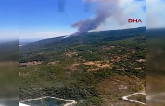 Aydın ve Muğla'da 2020'de 865 Hektar Alan Yandı!