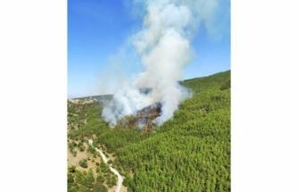 Kavaklıdere Yangınına Takviye Helikopter ve Uçak Sevk Edildi