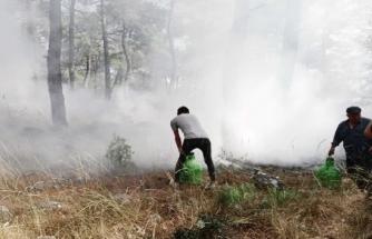 Menteşe'de Köylüler Yangına Koştu Kadınlar Traktör ile Su Taşıdı!