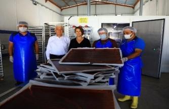 Meyve-Sebze Kurutma Tesisi İle Üretici Kazanıyor