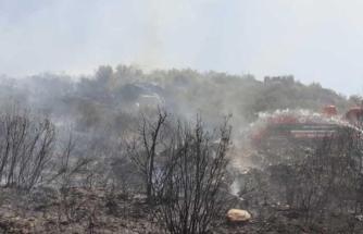 Muğla'da Çıkan Yangın Söndürüldü