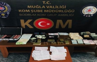 Muğla'da Kaçakçılık ve Tefecilik Operasyonu: 9 Gözaltı