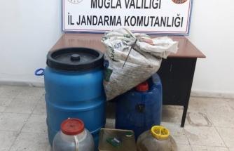 Muğla'da Çaldığı Zeytinlerle Zeytinyağı Yaptırdığı Öne Sürülen Şüpheli Yakalandı