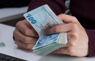 Muğla'nın Kişi Başı GSYH Değeri 2019 Yılı İçin 56 Bin 43 Lira Oldu