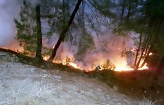 Muğla'da Yılın İlk Orman Yangını Seydikemer'de Çıktı
