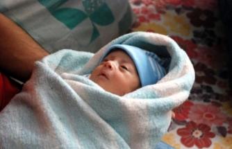 Muğla'da Doğurganlık Azalıyor