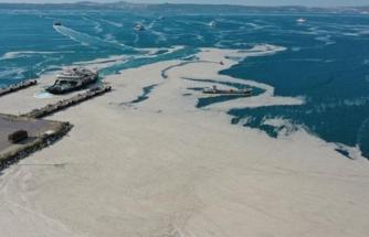 Uzmanlar Uyardı: Ege'den Gelen Kimyasal Atıklar Marmara'yı Lağıma Döndürebilir!