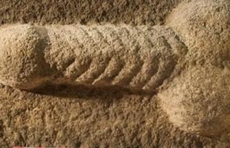 2 Bin Yıllık Taş Oyması Penis Bulundu