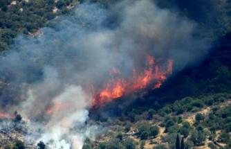 Bodrum'daki Yangınlar Büyüyor!
