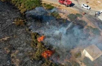 Didim'deki Yangınla İlgili 3 Şüpheli Gözaltına Alındı
