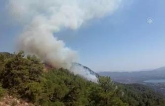 Köyceğiz'de Çıkan Orman Yangınına Müdahale Ediliyor