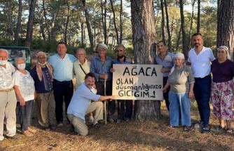 Milas'taki Akbelen Ormanı'nda Çevre Mücadelesinin 5. Günü!