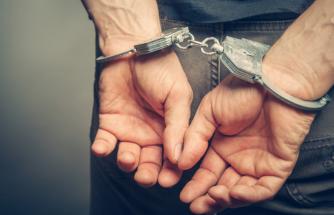 Milas'taki Yangınla İlgili Gözaltına Alınan Zanlı Tutuklandı