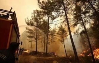 Marmaris'te Alevlere Müdahale Eden Orman İşçileri Kaza Yaptı: 4 Yaralı