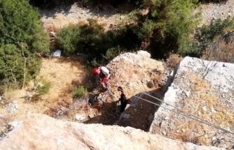 2 Gündür Bodrum'daki Kayalıklarda Mahsur Kalan Keçiler Kurtarıldı