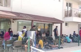 Datça'da 48 Düzensiz Göçmen Yakalandı