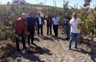 Ortaca İlçesi Muhtarlarından Beypazarı'na Ziyaret