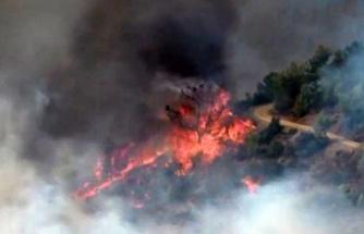 Mersin Anamur'da Orman Yangını Çıktı!