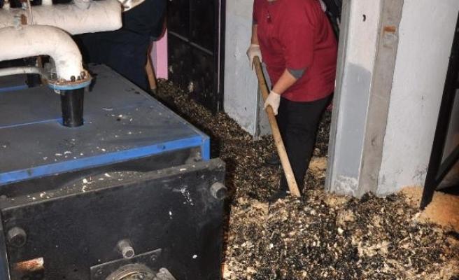 Muğla'da Akaryakıt Sızdı, Okul Tatil Edildi